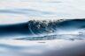 Impuls: Die Welle ist das Meer
