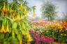 Hörimpuls: Die Blumen des Blinden